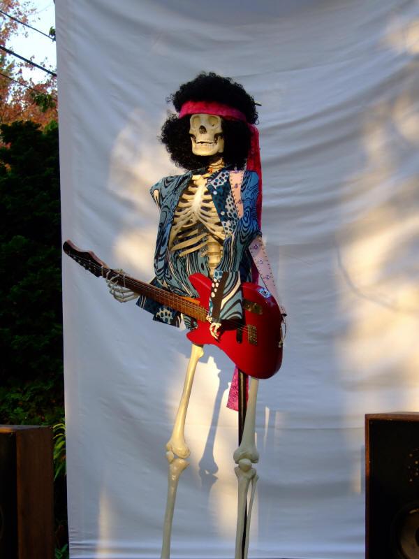 arlington ave halloween 2007 hippie halloween